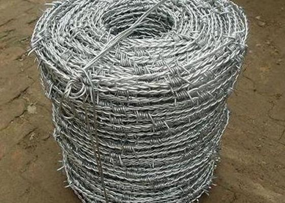 Cina Single / Double Wire Mesh Wire Mesh Galvanized 1.0.3.5mm Dia pabrik
